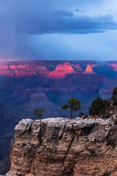 Grand Canyon National Park, Arizona. The primary public areas of the park are the North and South Rims of the Grand Canyon itself. The rest of the park is extremely rugged and remote. (V)