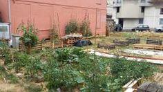 jardin partagé cauchy la fontaine