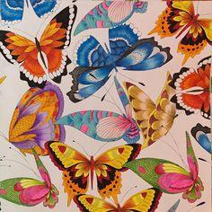 """From #tropicalwonderland #coloring_secrets #coloringbooks #coloringbook…"