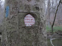 NO TRESPASSING #reddit #nature #growth #sign