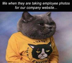 Funny Picdump  (52 pics) - Picture