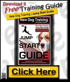 Dog Central | New Dog Times | Dog Training, Books, Dog Video