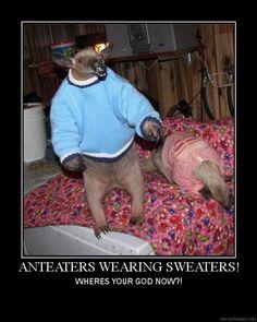 anteater.jpg (512×640)