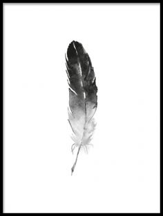 A black and white art print with a hand-painted feel of an aquarelle feather, in a beautiful and minimalistic style. This poster is nice to have as part of a picture wall or in a collage for a stylish touch in you home. This art poster is perfect to match with our illustrations and typography prints. Desenio.co.uk