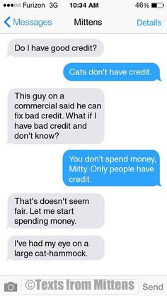 NEW Daily Mittens: The Credit Edition  More Mittens: http://textsfrommittens.com/  Order the Mittens book: http://www.amazon.com/Texts-From-Mittens-Unlimited-Afraid/dp/0373893221
