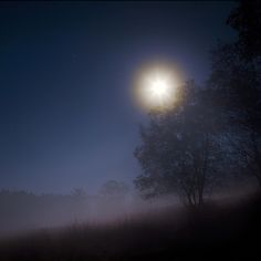 night by Aleksandr Matveev on 500px