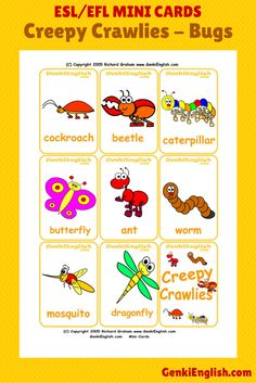 Kids love spring - soft puddles, rain, BUGS! Use these #ESL mini cards to teach your class what certain bugs are called in English.