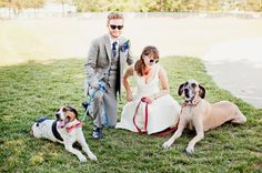 A ball field wedding with old-time charm   Offbeat Bride