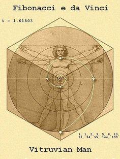 Fibonacci Golden Ratio, Fibonacci Spiral, Alchemy Symbols, Masonic Symbols, Fibonacci Sequence In Nature, Divine Proportion, Geometric Nature, Sacred Geometry Tattoo, Sacred Architecture