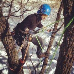 #Silky #Tsurugi! Great for pruning! #Arborist #Tree #Surgeon