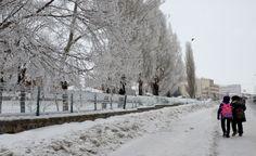 Doğu Anadolu'dan kartpostallık kar manzaraları-Sarıkamış, Kars