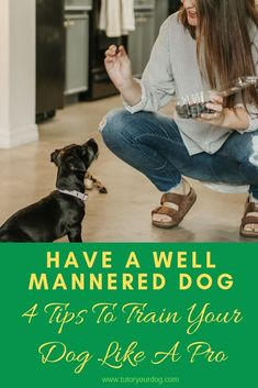 You can have a well mannered dog once you learn how to train him properly. Click through to check out our 4 tips to train your dog like a professional dog trainer. Dog Training Come, Online Dog Training, Dog Training Classes, Dog Training Techniques, Dog Training Tips, Dog Status, Alpha Dog, Easiest Dogs To Train, Pet Care Tips