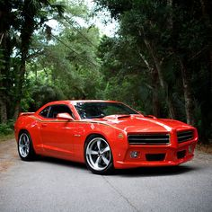 EPIC Trans Am Specialties 6T9 'The Judge' GTO