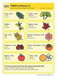 325 Learn Korean Hangul Trees of Korea 2