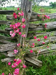 9 Capable Cool Tricks: Privacy Fence With Posts Modern Fence Backyard.Front Yard Fence And Gate Wooden Fence With Gate.Wooden Fence With Gate. Country Fences, Rustic Fence, Country Roads, Fence Landscaping, Backyard Fences, Yard Fencing, Inexpensive Landscaping, Natural Landscaping, Short Fence