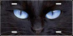 Cat Eyes (Blue) Airbrush License Plate