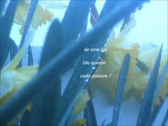 Falas do Sol - Eugénio de Andrade - YouTube