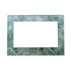 www.zazzle.com/dekosbykarin : White dandelion stars magnetic picture frame for your holiday pic #zazzle #pictureframe #flower #pattern #dandelion #gifts #fotosbykarin