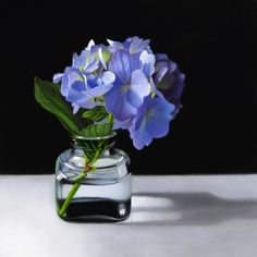 Hydrangea 8x8, painting by artist M Collier