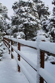 Flagstaff, AZ snow