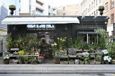 Located on Værndamsvej, a street that dissects Copenhagen from Frederiksberg, Martin Reinickes Blomsterskuret (meaning flower shed in Danish) is overflowing with starter plants, topiaries, and fresh cut flowers.
