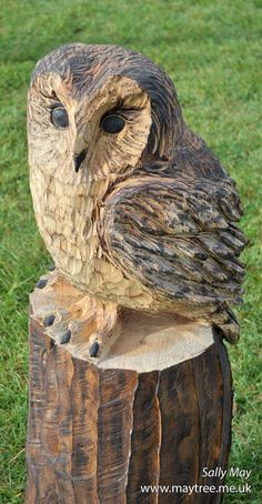 A water based preserver to finish on this chainsaw carved tawny owl helps to show off the natural colour of the wood.