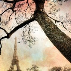 $14.97  Eiffel Tower picture print...  I absolutely *love* this guy's photography...