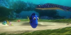 Dory Searches for Answers to Her Past in Finding Nemo Sequel