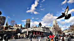 Pigeon photobomb! #pigeon #photobomb #toweroflondon #london #towerbridge #england #uk #history #memorial #thames #travel #tourist #towerhill #greatbritain #thisislondon #cityoflondon #lovelondon #british #view #instalondon by george_chramosil