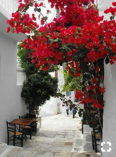 Rhodes island, Greece