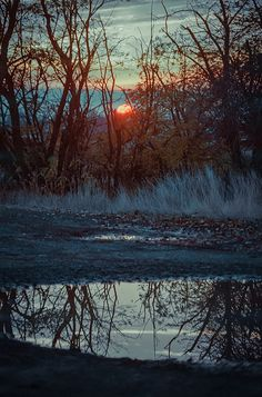 Sunset over Puddle by photosbysomeguy, via Flickr