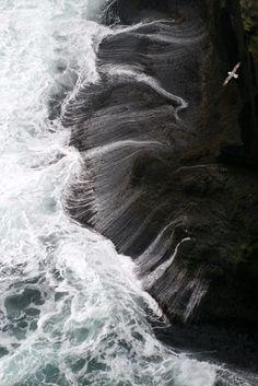 Fulmar flying over the foam of the Westmann Islands (Iceland) | Fulmar boréal survolant l'écume des îles Vestmann (Islande) | Fulmar volando sobre la espuma de las Islas Westmann (Islandia)