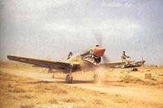Curtiss P-40 ''Kittyhawk'' en Afrique du nord, mécano sur l' aile pour diriger le pilote