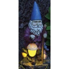 Gnome with solar light. Love! $25