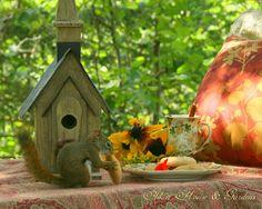 Aiken House & Gardens: Autumn Days