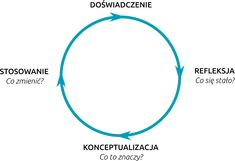 Cykl Kolba dla trenerów - cztery fazy uczenia się przez doświadczenie