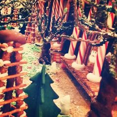 Can you guess the theme of this year's Gingerbread display? *Hint* It is a famous Louisiana story.
