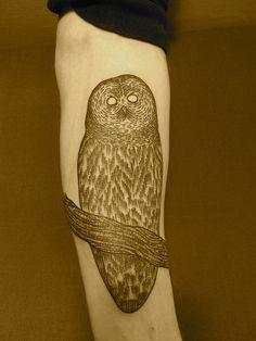 owl by lyam, via Flickr