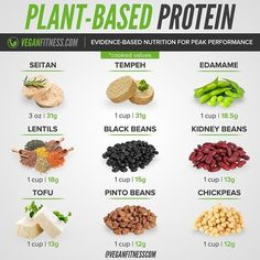Photo by Vegan Fitness & Nutrition Ⓥ on December 08, 2020. May be an image of food and text that says 'PLANT-BASED PROTEIN VEGANFITNESS.COM EVIDENCE-BASED NUTRITION FOR PEAK PERFORMANCE #vegan #veganliving #veganlife Seitan, Tempeh, Pinto Beans, Plant Based Protein, Kidney Beans, Protein Sources, Vegan Protein, Edamame, Recipe Images