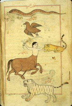 Ajā'ib al-makhlūqāt wa-gharā'ib al-mawjūdāt (Marvels of Things Created and Miraculous Aspects of Things Existing) by al-Qazwīnī.  Five southern constellations, Astrology.