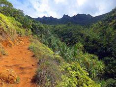 The Ultimate Hawaii Hiking Bucket List Is Right Here And You'll Definitely Want To Complete It