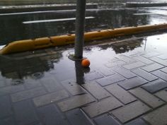 Quando un'arancia si perde, cercando un pomodoro smarrito