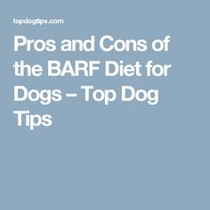 Pros and Cons of the BARF Diet for Dogs – Top Dog Tips