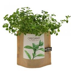 garden in a bag: oregano