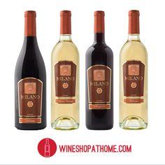 To shop our newest wines, visit me at :: www.vinosocialshop.com OR www.wineshopathome.com/shanitab