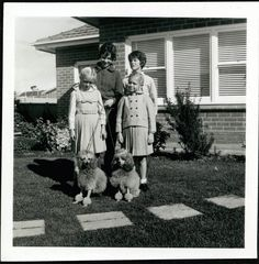 vintage photo 1961 French Poodles w Bows 4 Girls by House. $10.00, via Etsy.
