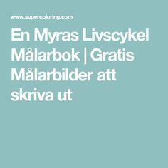 En Myras Livscykel Målarbok   Gratis Målarbilder att skriva ut