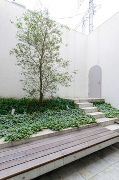 右の扉から地下レベルに下りる。オリーブの木が植えられた庭の手前につくられたベンチで一息入れることもできる。