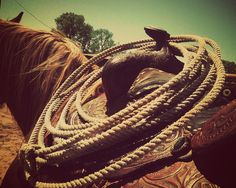It's a country kinda thing. Chase your dreams, rope your future <3