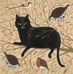 Catriona Hall, Curious Cat